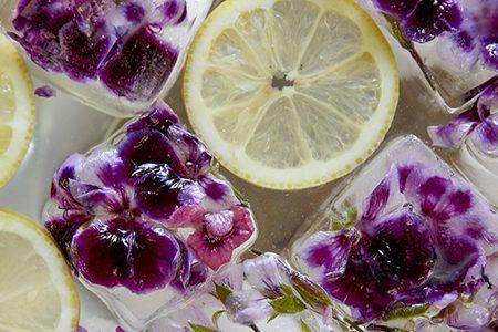 Cubetti di ghiaccio con fiori di geranio: l'idea per l'estate!